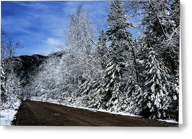 Apgar Greeting Cards - Canyon Road Color Greeting Card by Jessie Mazur