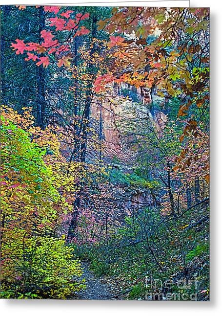 Best Sellers -  - West Fork Greeting Cards - Canyon Trail Greeting Card by Brian Lambert