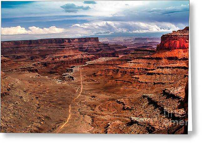 Canyonland Greeting Card by Robert Bales