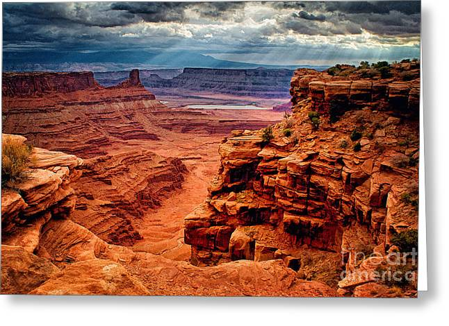 The Plateaus Greeting Cards - Canyonlands After the Storm Greeting Card by Priscilla Burgers