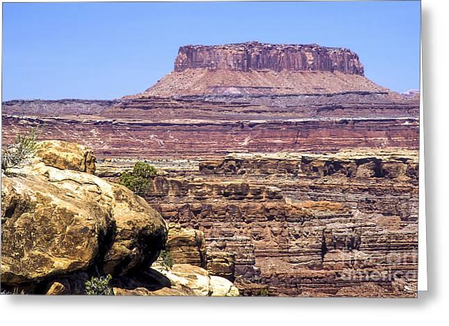 Slickrock Greeting Cards - Canyonlands Mesa Greeting Card by Bob Phillips