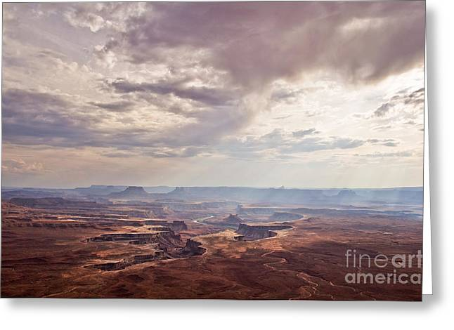 Canyon Lands Greeting Cards - Canyonlands panorama Greeting Card by Delphimages Photo Creations