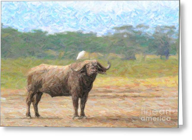 Africa Greeting Cards - Cape Buffalo Syncerus caffer with Cattle Egret Greeting Card by Liz Leyden