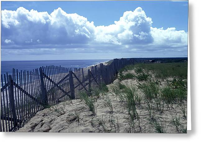 Cape Town Greeting Cards - Cape Cod - Wellfleet Greeting Card by Nomad Art And  Design