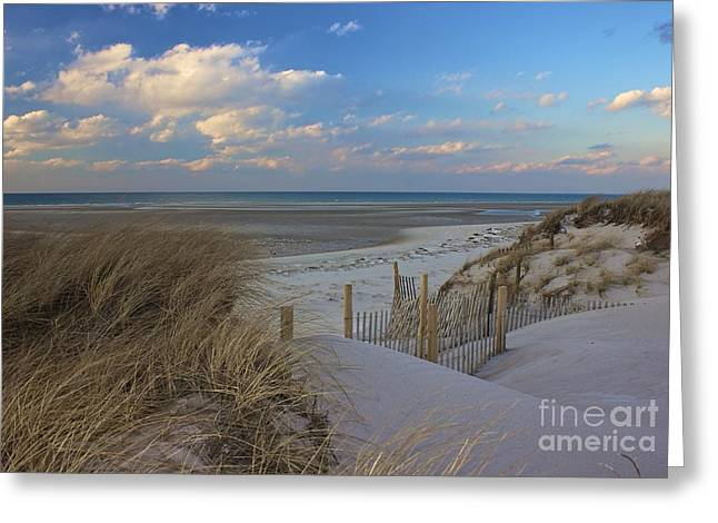 Mayflower Beach Greeting Cards - Cape Cod  Greeting Card by Amazing Jules