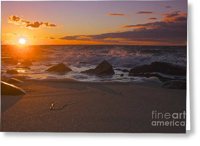 Amazing Jules Greeting Cards - Cape Cod Beauty Greeting Card by Amazing Jules