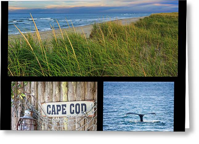 Whale Beach Greeting Cards - Cape Cod Greeting Card by Bill  Wakeley