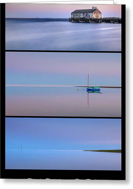 Whale Beach Greeting Cards - Cape Cod Blues Greeting Card by Bill  Wakeley