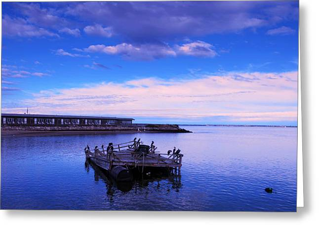 Boston Ma Greeting Cards - Cape Cod Boston Massachusetts  Greeting Card by Paul Ge