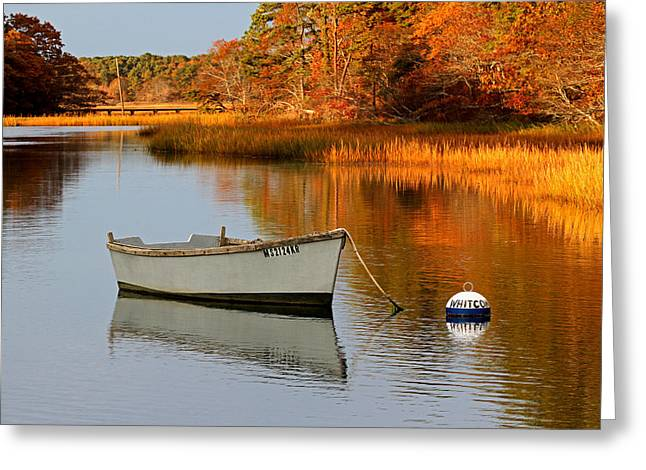 Dingy Greeting Cards - Cape Cod Fall Foliage Greeting Card by Juergen Roth
