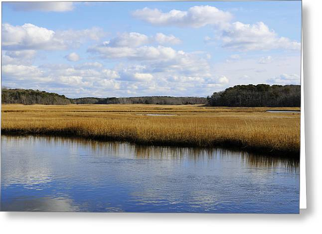 Harwich Greeting Cards - Cape Cod Marsh Greeting Card by Luke Moore