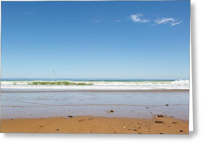 Cape Cod Landscapes Greeting Cards - Cape Cod National Seashore Greeting Card by Bill  Wakeley