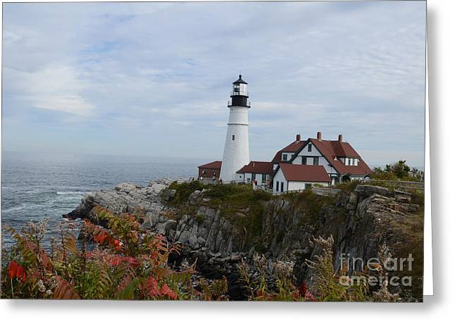 Jim Cook Greeting Cards - Cape Elizabeth Greeting Card by Jim Cook