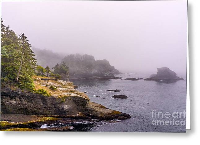 Cape Flattery Greeting Cards - Cape Flattery Greeting Card by Carrie Cole