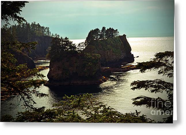 Cape Flattery Greeting Cards - Cape Flattery Greeting Card by Frank Larkin