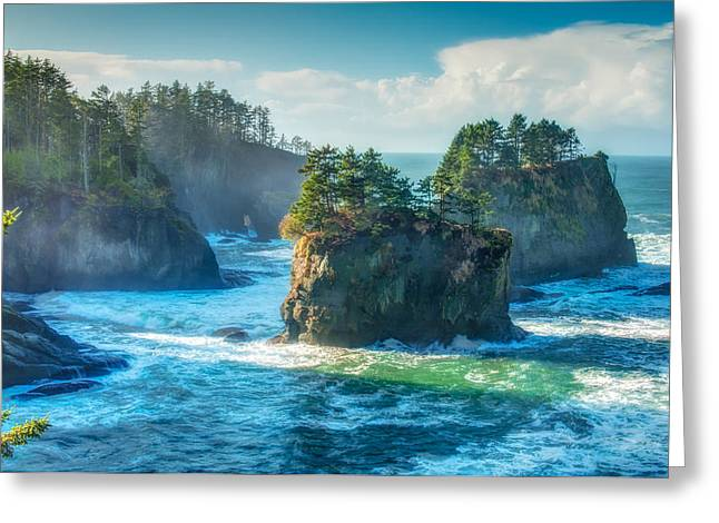 Cape Flattery Greeting Cards - Cape Flattery Greeting Card by Rich Leighton