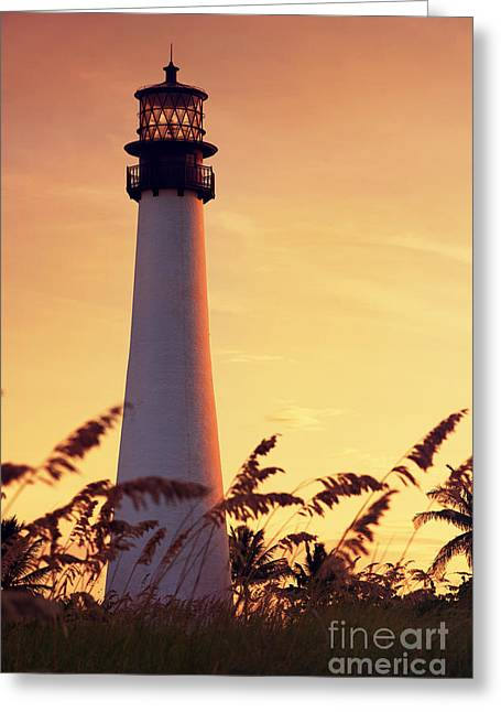 Peaceful Scene Pyrography Greeting Cards - Cape Florida Lighthouse Greeting Card by Dmitry Chernomazov