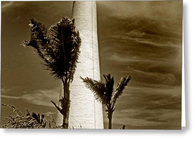 CAPE FLORIDA LIGHTHOUSE Greeting Card by Skip Willits