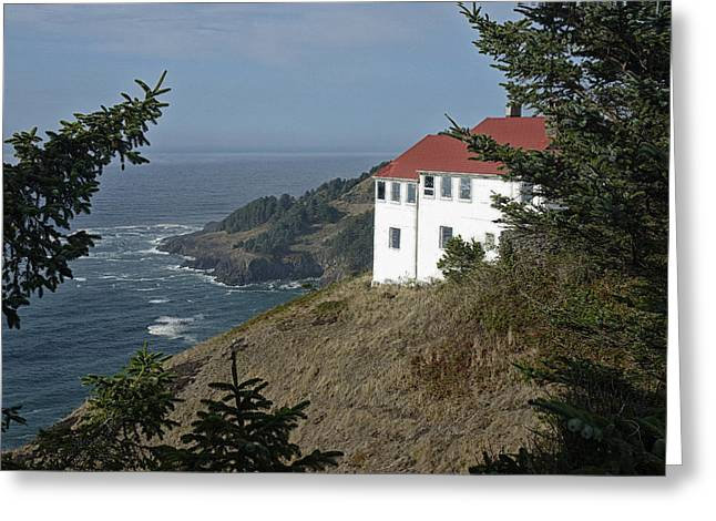 Agate Beach Oregon Greeting Cards - Cape Foulweather Lookout Greeting Card by Betty Depee