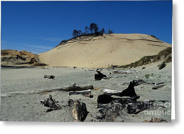 Pacific Ocean Prints Greeting Cards - Cape Kiwanda Sand Dune Greeting Card by Sharon Elliott