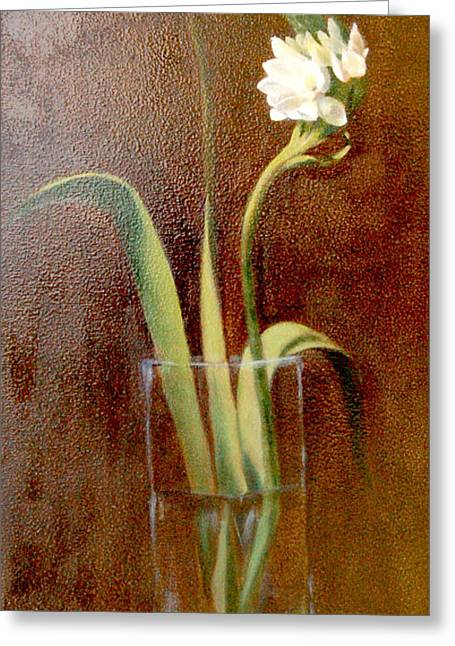 Cape Lily Greeting Cards - Cape Lily Greeting Card by Bev Beresh