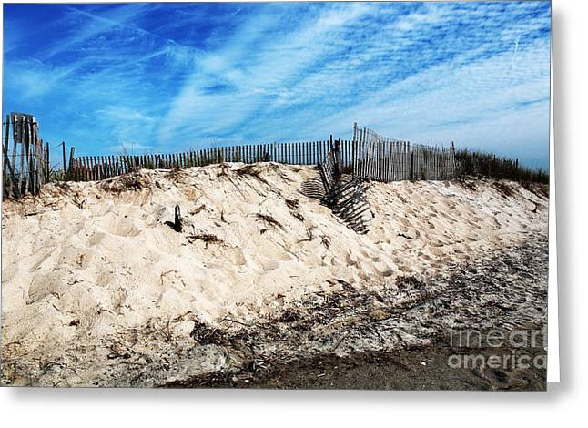 Sand Fences Greeting Cards - Cape May Dunes Greeting Card by John Rizzuto