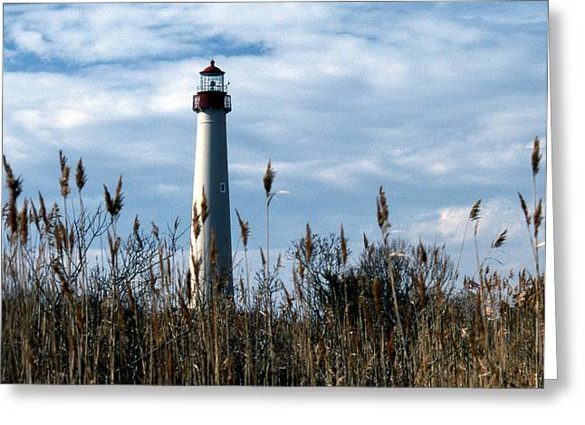 Lighthouse Photography Greeting Cards - Cape May Light Greeting Card by Skip Willits