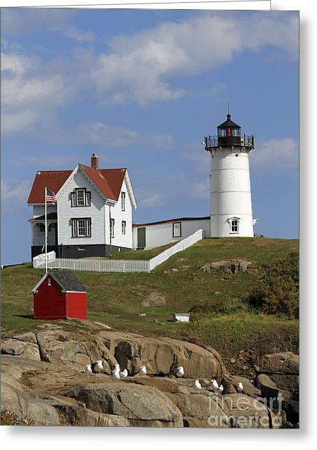 Cape Neddick Greeting Cards - Cape Neddick Lighouse Greeting Card by John Van Decker