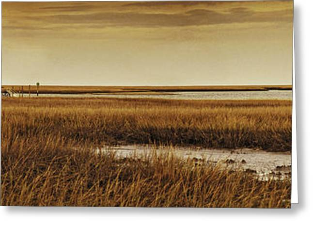 Cape Romaine Greeting Card by Bruce Bain