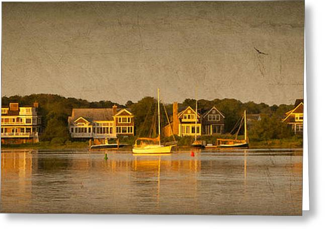 Sea Birds Greeting Cards - Cape Sunset Greeting Card by Michael Petrizzo