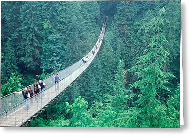 Haze Greeting Cards - Capilano Bridge, Suspended Walk Greeting Card by Panoramic Images