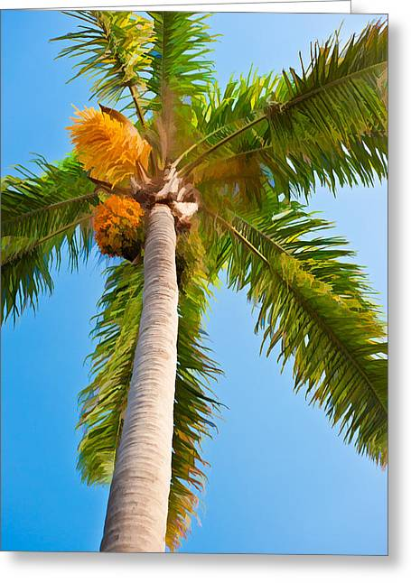 Warm Greeting Cards - Capistrano Palm Tree Greeting Card by Duane Miller