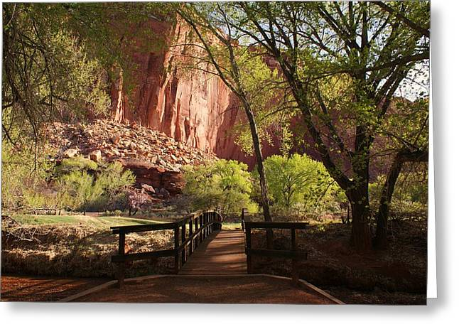 Desert Greeting Cards - Capitol Reef Bridge Greeting Card by Michael J Bauer