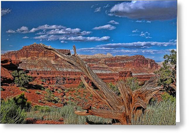 Sand Castles Greeting Cards - Capitol Reef National Park Greeting Card by Allen Beatty