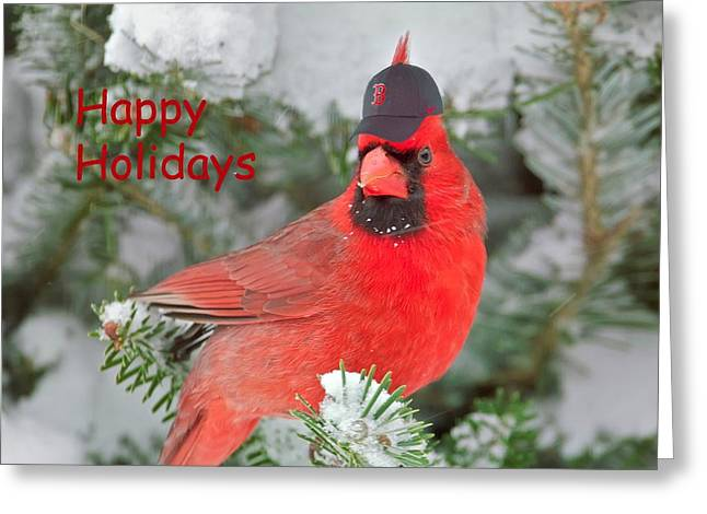 Boston Red Greeting Cards - Capped The Cardinals Greeting Card by Dale J Martin