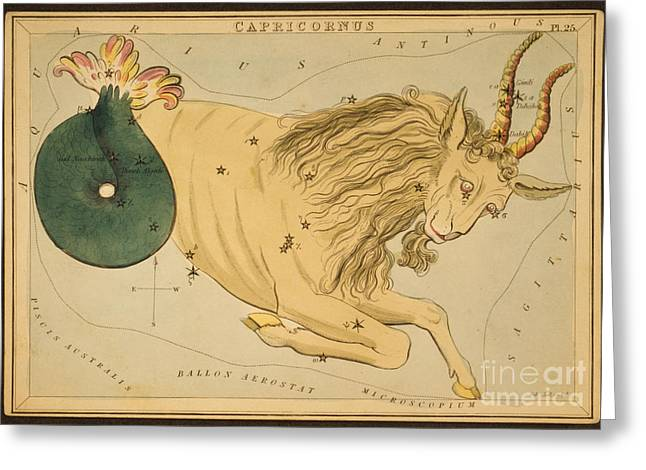 Constellations Greeting Cards - Capricornus Constellation Zodiac Sign Greeting Card by Science Source