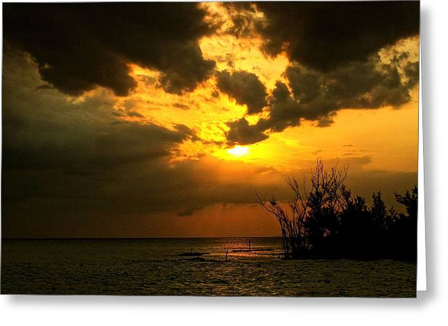 Reflection In Water Greeting Cards - Captiva Island Ends the Day Greeting Card by Kandy Hurley