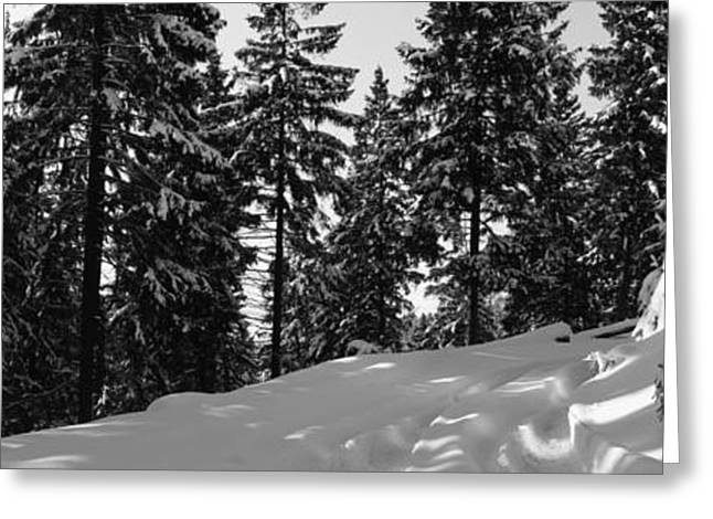 Road Covered With Snow Greeting Cards - Car tracks in deep snow - monochrome Greeting Card by Intensivelight