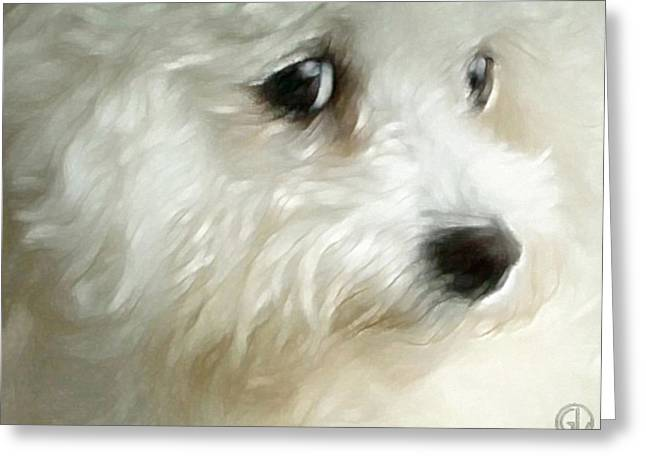 Puppy Digital Greeting Cards - Cara Greeting Card by Gun Legler