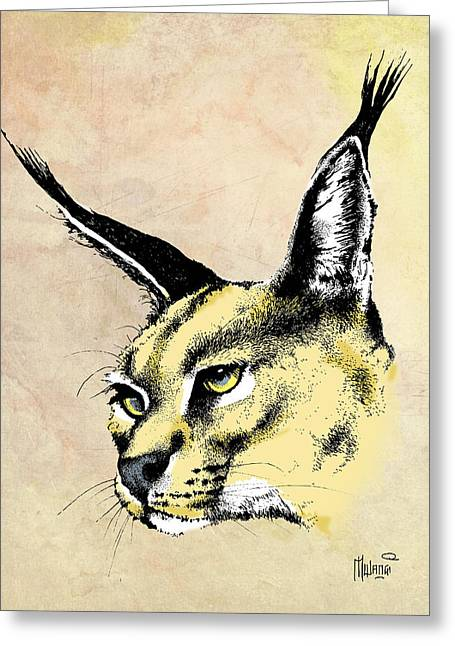 Pen And Ink Lynx Drawings Greeting Cards - caracal Color Greeting Card by Anthony Mwangi