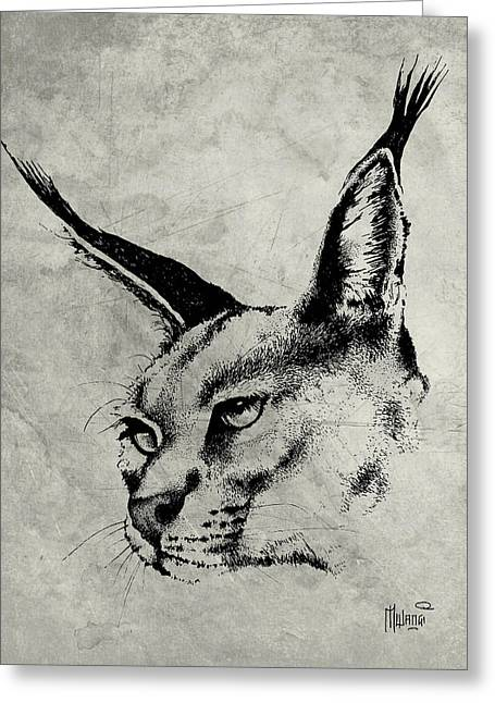 Pen And Ink Lynx Drawings Greeting Cards - Caracal Greyscale Greeting Card by Anthony Mwangi