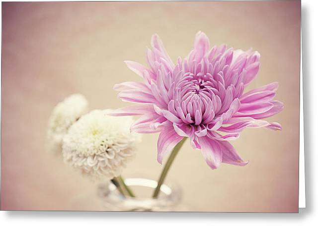 Floral Photographs Greeting Cards - Caramel Greeting Card by Nastasia Cook