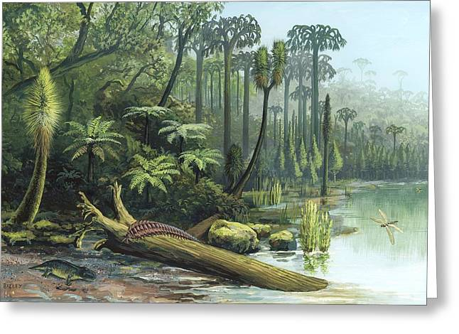 Invertebrates Greeting Cards - Carboniferous landscape, artwork Greeting Card by Science Photo Library