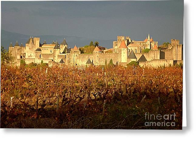 Wine Tour Greeting Cards - Carcassonne in Fall Greeting Card by France  Art