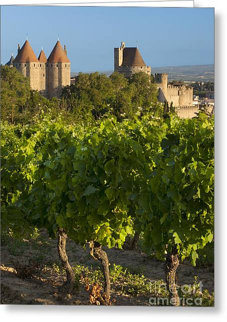 Languedoc Greeting Cards - Carcassonne Morning Greeting Card by Brian Jannsen