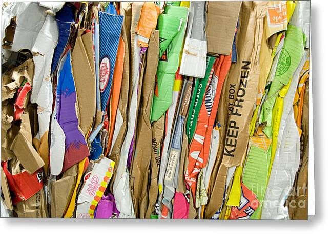 Cardboard Digital Greeting Cards - Cardboard recycle Greeting Card by Glenn Morimoto