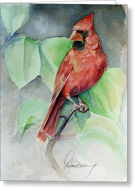 Song Birds Greeting Cards - Cardinal #1 Greeting Card by Don Dane