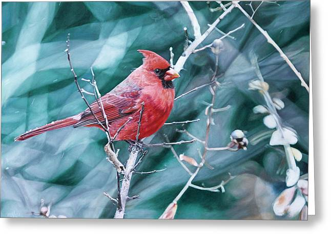Hyper-realism Paintings Greeting Cards - Cardinal in Winter Greeting Card by Joshua Martin