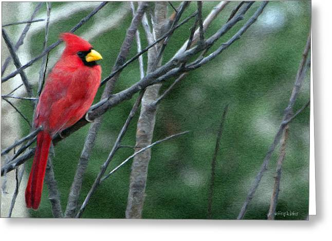 Cardinal West Greeting Card by Jeff Kolker