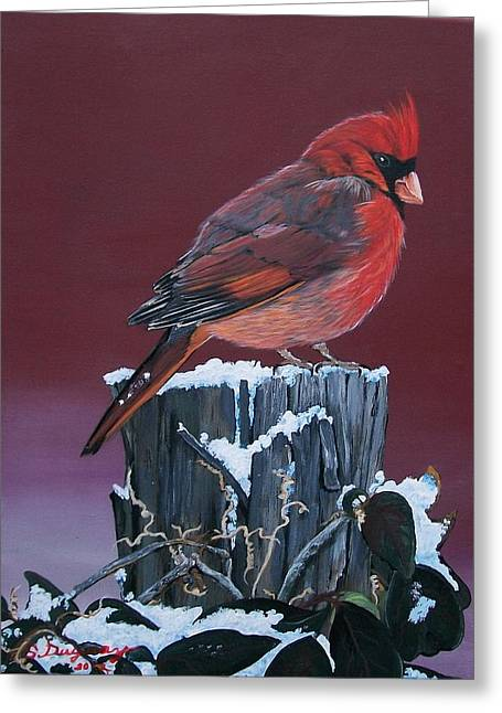 Botanical Greeting Cards - Cardinal Winter Songbird Greeting Card by Sharon Duguay